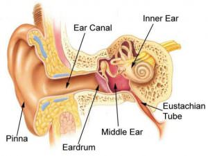 hearing-loss-abilene